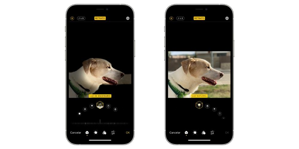 lighting portraits iphone
