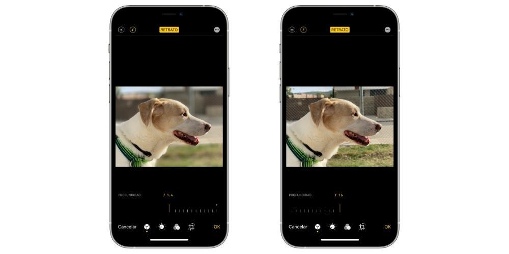 level depth portraits iphone