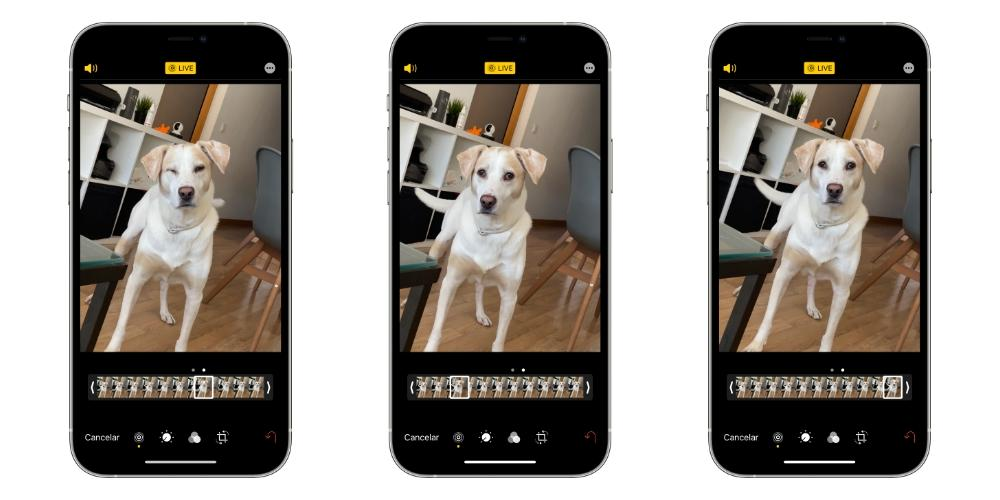 choose iphone frame