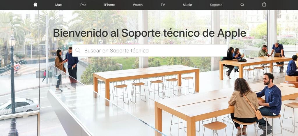 web technical support apple